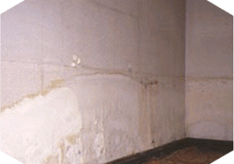 A wall with a tide mark indicating there is rising damp